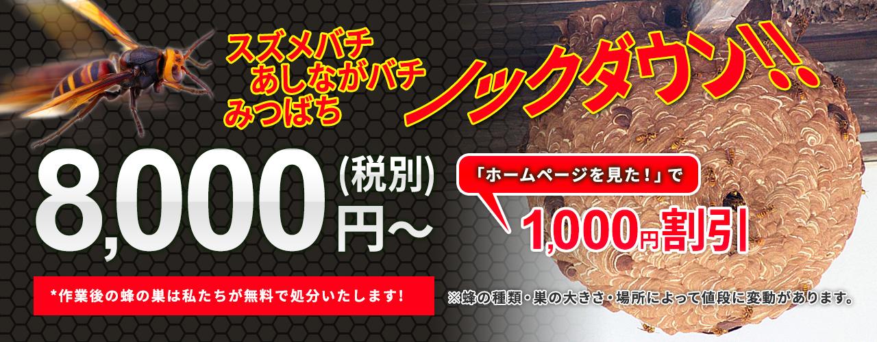 蜂駆除:8,000円(税別)~